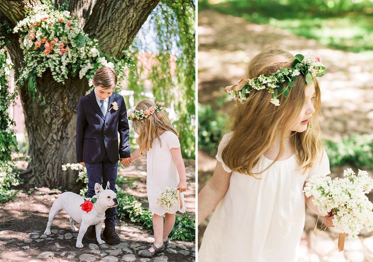 Ring Bearer Flower Girl French Bulldog Wedding