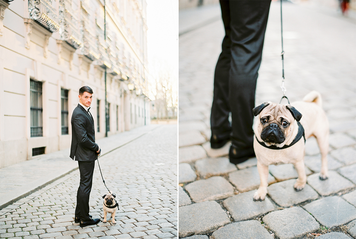 Hochzeitsfotograf Wien Palais Liechtenstein Hotel Imperial Vienna. Groom and his Pug