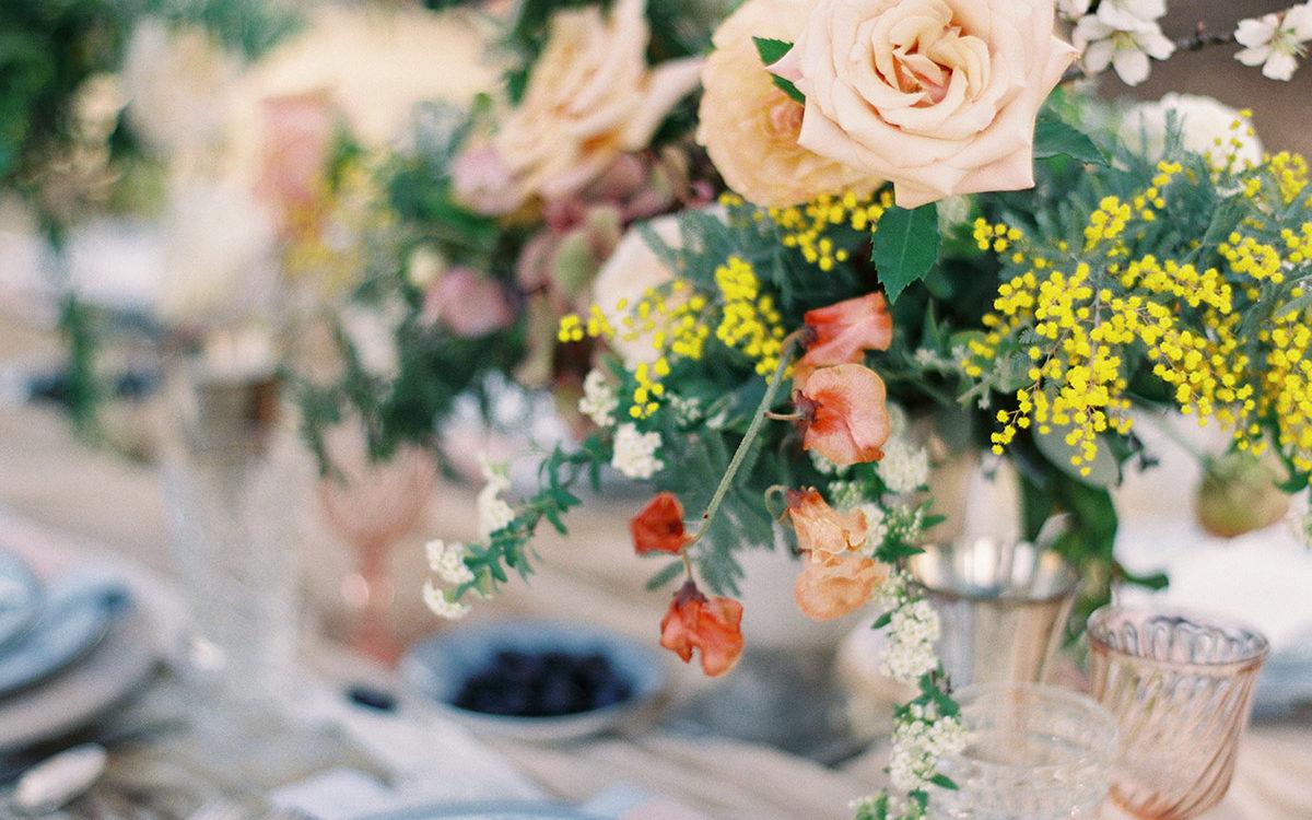 Provencal Wedding at Terra Mia