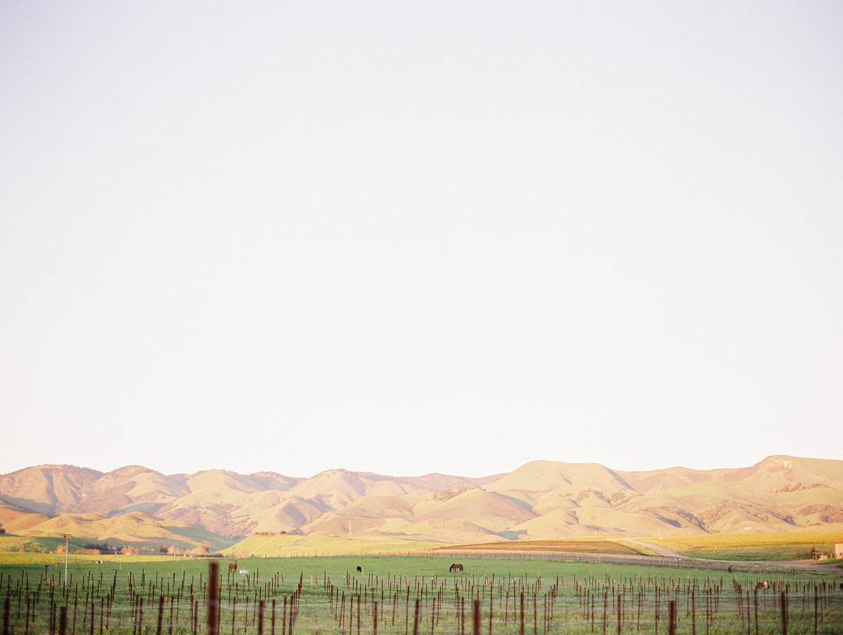 Edna Valley San Luis Obispo, California Travel Photo