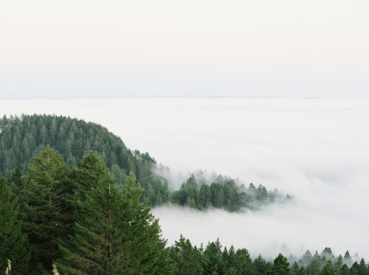 Mount-Tam-Clouds-Travel-Photo